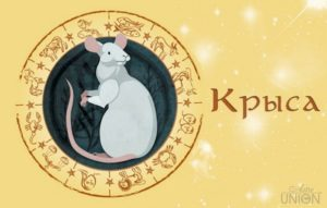 гороскоп на год крысы 2020